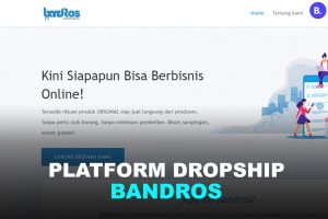 platform dropship indonesia